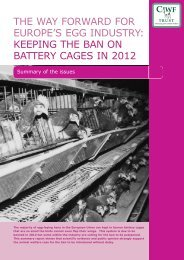 the way forward for europe's egg industry: keeping the ban on ...