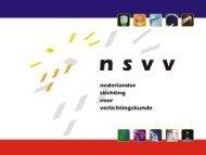 Paul Settels, NSVV - Nederlandse Licht Associatie