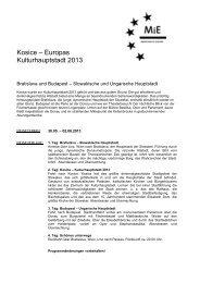 Kulturhauptstadt 2013 4 Tage - Passauer Neue Presse