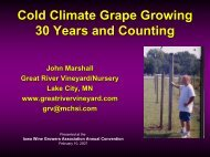 Cold Climate Grape Growing 30 Years and Counting