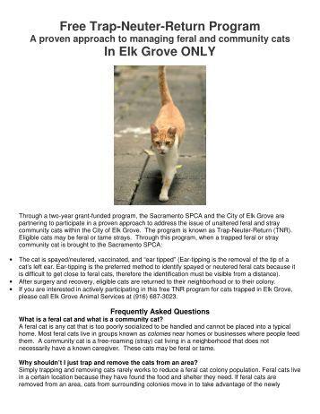 Free Trap-Neuter-Return Program In Elk Grove ONLY - Sacramento ...