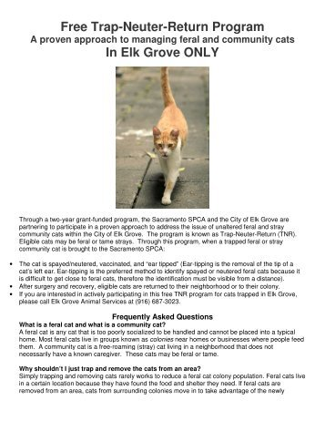 Free Trap-Neuter-Return Program In Elk Grove ONLY - Sacramento ...