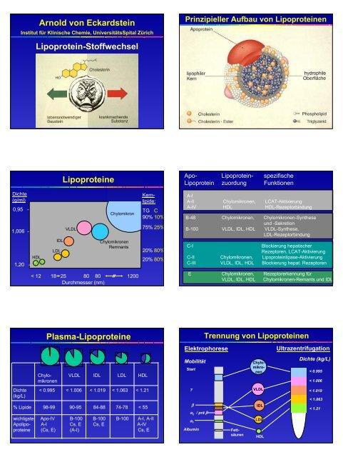 Arnold von Eckardstein Lipoprotein-Stoffwechsel Lipoproteine ...