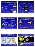 Arnold von Eckardstein Lipoprotein-Stoffwechsel Lipoproteine ... - Seite 2