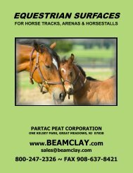 4 - Equestrian Surfaces - Beam Clay