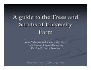 Trees and Shrubs of the Farm