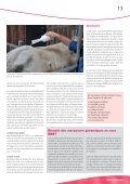 La gale, prévenir vaut mieux que guérir! - AWE - Page 5