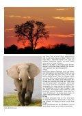 Botswana Special - Aschi Widmer - Seite 2