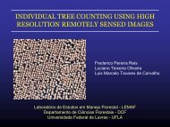 individual tree counting using high resolution remotely sensed images
