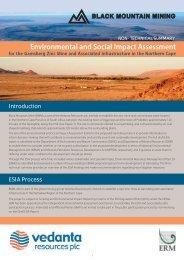 Non-Technical Summary (English) - ERM