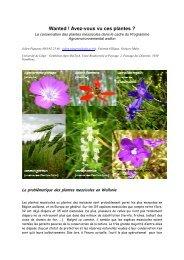 Wanted ! Avez-vous vu ces plantes ? - La biodiversité en Wallonie