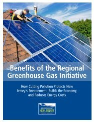 Download Report (PDF) - Environment New Jersey