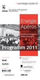 Programm 2011 - Gebäudehülle Schweiz
