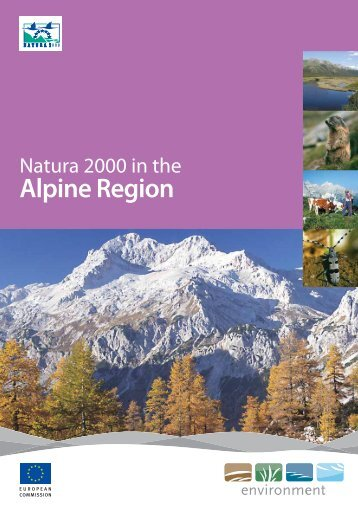 Alpine Region