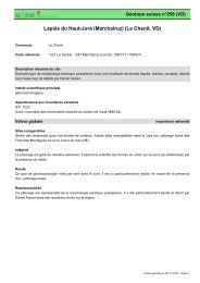 Lapiés du Haut-Jura (Marchairuz) (Le Chenit, VD) - admin.ch