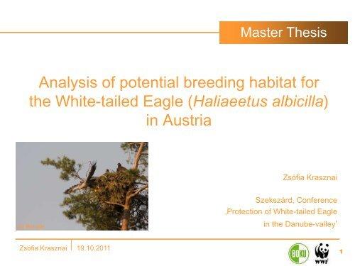 Potential habitats of White-tailed Eagle in Austria ... - DANUBEPARKS