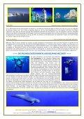 SOCORRO ARCHIPEL 2013 - SELEGER SportsTravel - Seite 3