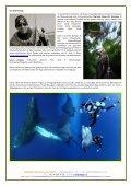 SOCORRO ARCHIPEL 2013 - SELEGER SportsTravel - Seite 6