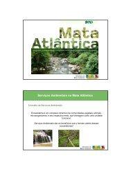 Serviços Ambientais na Mata Atlântica
