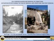 Fall Chinook Salmon and Removal of Condit Dam - Washington ...