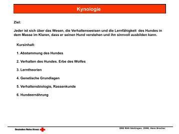 book Der Liebesbrief: Schriftkultur und Medienwechsel