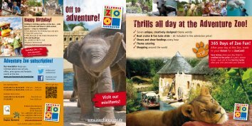 Download all Informations (PDF) - Zoo Hannover