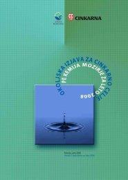 Okoljska izjava PE KM za leto 2008-1 - Cinkarna Celje