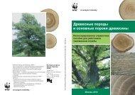 Древесные породы и основные пороки древесины - Единое окно ...