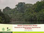 Lessons learned from CIFOR on REDD+ MRV on national level