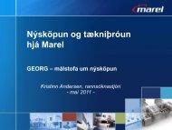 Marel – í hnotskurn - Georg