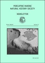 Porcupine Newsletter Number 25, Winter 2008/09.