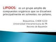 Bioquimica, CHEM 4220 Universidad Interamericana de PR Recinto ...