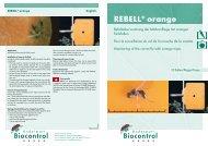 REBELL® orange - BIOFA