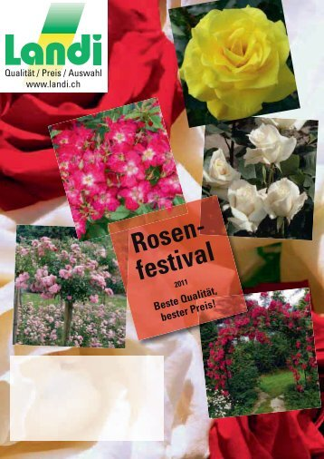 Rosen- festival