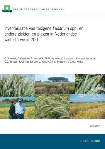 Inventarisatie van toxigene Fusarium spp. en ... - Kennisakker.nl