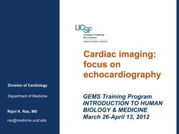 Cardiac imaging: focus on echocardiography
