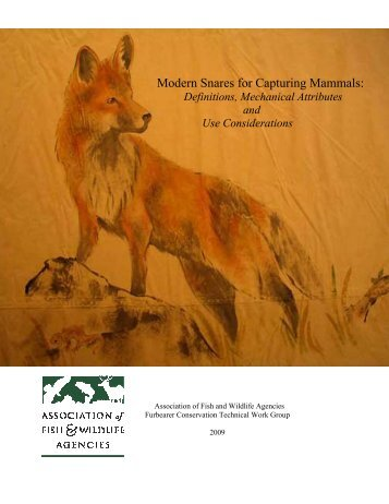 Modern Snares for Capturing Mammals: - Association of Fish and ...