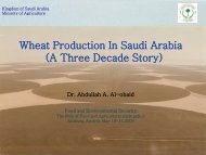 Wheat Production in Saudi Arabia - International Food & Agricultural ...
