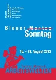 Programm BLAUER SONNTAG 2013 zum Download