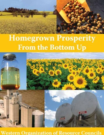 Homegrown Prosperity from the Bottom Up - Western Organization ...