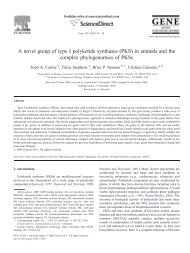A novel group of type I polyketide synthases (PKS) in ... - index