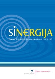 SiNERGIJA- Program Ministrstva za gospodarstvo za leto 2007