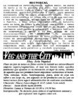 5 - Resistencia Vegana - Page 2
