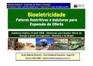 Bioeletricidade - Cogen