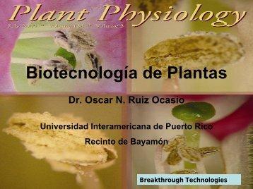 trnA - Universidad Interamericana de Puerto Rico