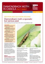 Diamondback moth in canola - Grains Research & Development ...