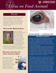 Focus on Food Animal - Texas A&M Veterinary Medicine