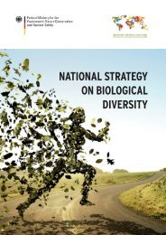 National Strategy on biological Diversity - Business and Biodiversity ...