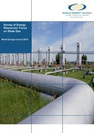 Survey of Energy Resources: Focus on Shale Gas - World Energy ...