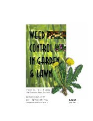 Weed Control in Garden and Lawns